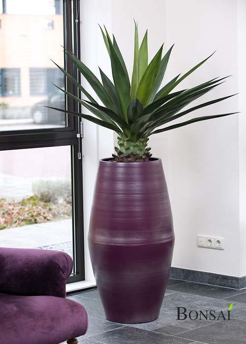 Cvetlična vaza Atlantic 70x38 črna - vijoličasta aloa