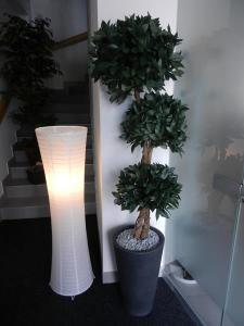 umetno drevo lovor