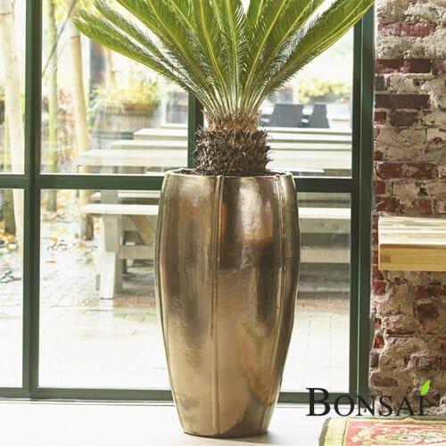 Cvetlični okrasni lonec - okrasna vaza Gold