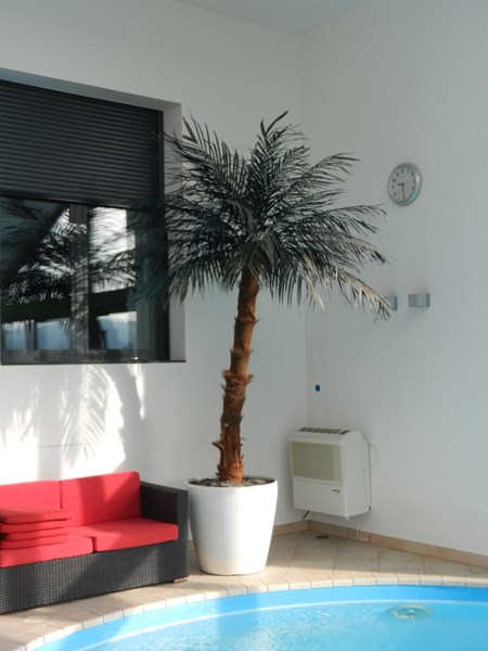 Umetna palma kokos