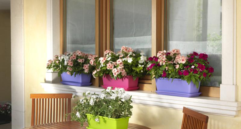 korito za balkon - balkonsko cvetje tagle za cviječe