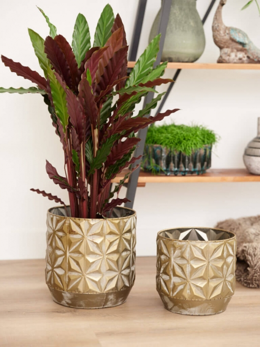 okrasna vaza za rože Bonsai cink