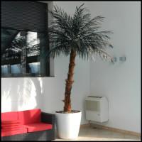 Umetna palma veštačke palme umjetne palme umetne