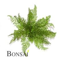 veštačke biljke