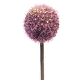 umetna okrasna čebula - umetno cvetje