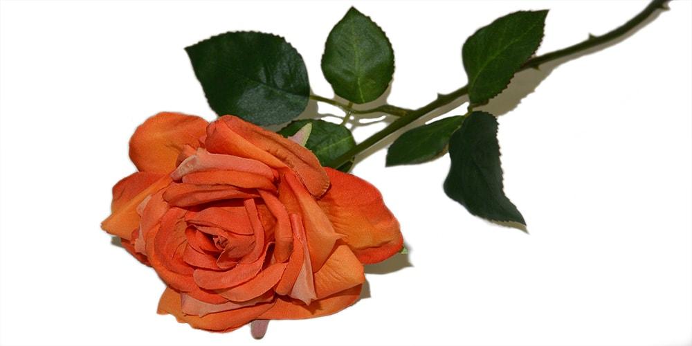umetno cvetje vrtnica
