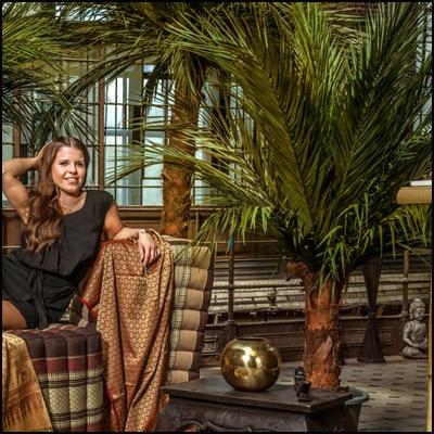 umetne palme kokos palme areka palme Bonsai Trzin