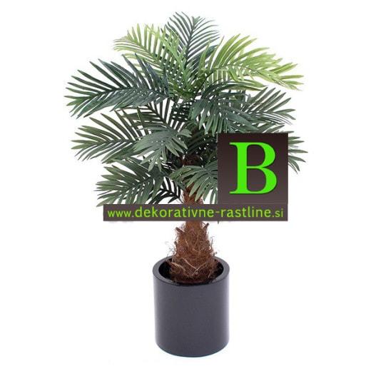 Umetna dekorativna palma umjetne palme Fenix