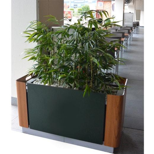 umetni bambus v koritu umetne rastline Bonsai