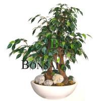 umetni bonsai Fikus Benjamin Ficus umjetni bonsai vestacki bonsai